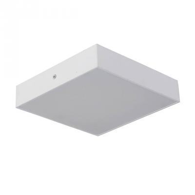 Купить Потолочный светодиодный светильник Favourite Flashled 2066-24C