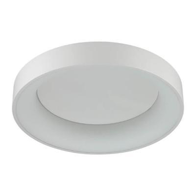 Потолочный светодиодный светильник Odeon Light Sole 4062/50CL потолочный светодиодный светильник odeon light sole 4062 80cl