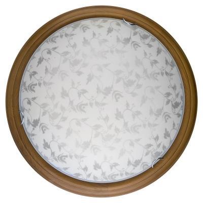 Настенно-потолочный светодиодный светильник Toplight Beatrice TL9280Y-00OA