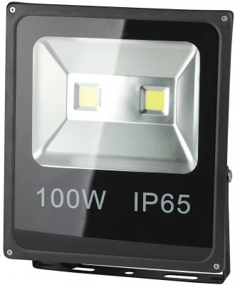 Прожектор светодиодный ЭРА LPR-100-6500К-М 100Вт 6500к 7000Лм 335х290х70мм цена 2017