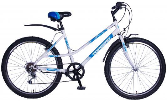Велосипед Top Gear Style 100 — ВН26420-6sН автокосметика top gear