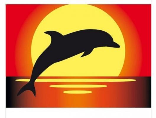 Раскраска А4 Дельфин - Раскрась цветным песком с блестками