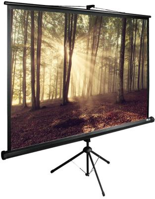 Картинка для Экран напольный рулонный Cactus CS-PSTE-180Х135-BK 135 x 180 см