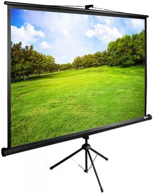 Картинка для Экран напольный рулонный Cactus CS-PSTE-200Х150-BK —