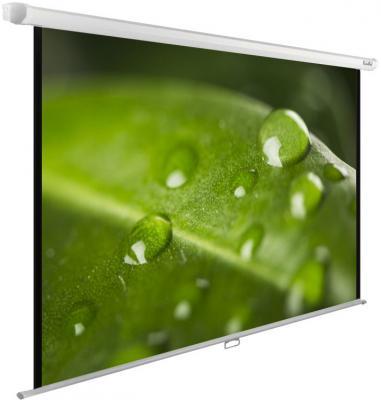 лучшая цена Экран настенно-потолочный Cactus CS-PSWE-200X150-WT 150 x 200 см