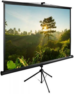 Картинка для Экран напольный рулонный Cactus CS-PSTE-200Х200-BK 200 x 200 см