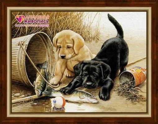 Алмазная живопись Щенята на рыбалке 40*30 живопись diy digital painting diy 30 40