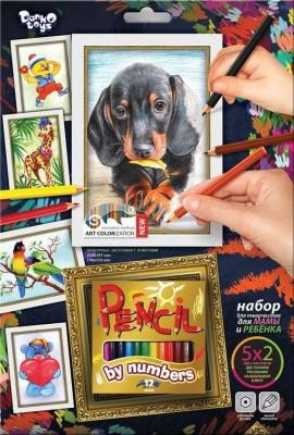 Раскраска по номерам ДАНКО-ТОЙС Собака от 3 лет азбука тойс раскраска по номерам принцесса в синем