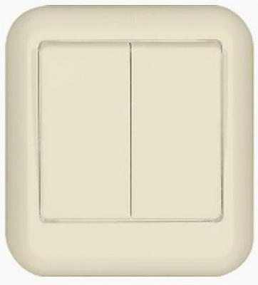 Выключатель WESSEN A56-029-SI Прима Беж 2-клавишный 6А наружный в сборе индивид.упаковка