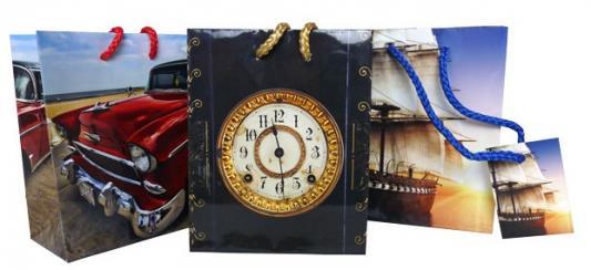 Купить Пакет подарочный Winter Wings Пакет подарочный 11.1x13.7x6.2 cм, Подарочные пакеты