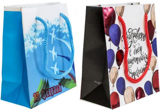 Купить Пакет подарочный Winter Wings Пакет подарочный 111х137х62 мм, Подарочные пакеты