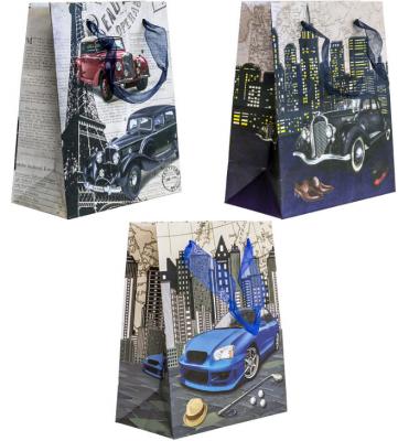 Купить Пакет подарочный Winter Wings Пакет подарочный 150x80x180 мм, Подарочные пакеты