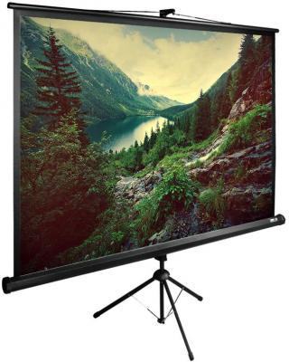 все цены на Экран напольный рулонный Cactus TriExpert CS-PSTE-220х220-BK 220 x 220 см онлайн