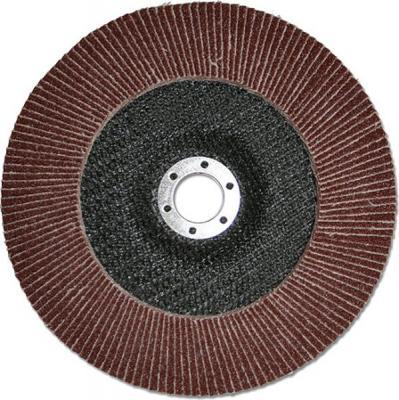 Лепестковый круг 125 Х 22 Р100 (№16) КЛТ тип 1 круг лепестковый 125х22 р100 16 luga