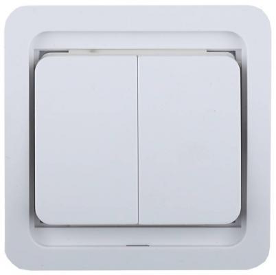 Выключатель СВЕТОЗАР SV-54134-W гамма двухклавишный без подсветки белый 10А 250В