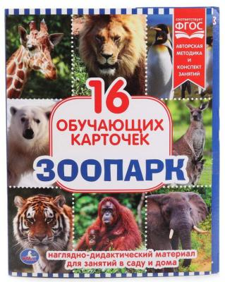 Купить Карточки в папке Умка Зоопарк, Обучающие материалы для детей