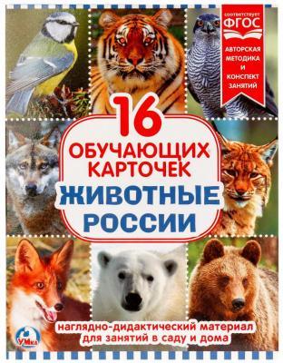 Купить Карточки в папке Умка Животные России, Обучающие материалы для детей