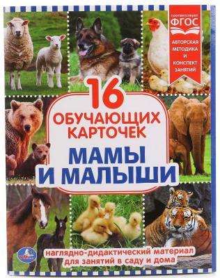 Купить Карточки в папке Умка Мамы и Малыши, Обучающие материалы для детей