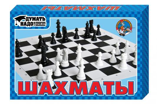 Настольная игра Десятое королевство шахматы Шахматы
