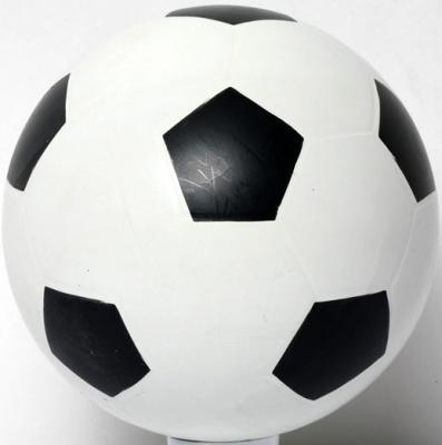 Мяч футбольный Мячи Чебоксары С-56П 20 см аквариумистика чебоксары