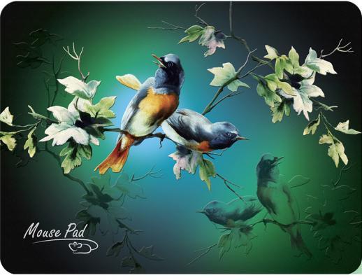 Dialog PM-H17 bird Коврик черный с цветными птицами, размер 285x215x3 мм коврик для мыши dialog pm h17 черный