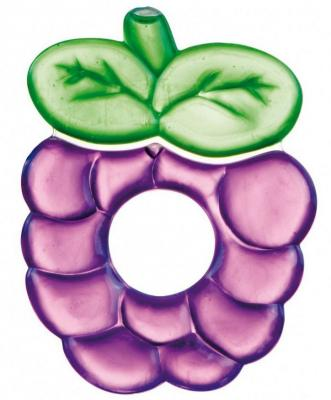 Прорезыватель водный Canpol Fruits фиолетовый с рождения охлаждающий 2/812