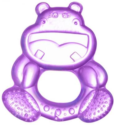 Прорезыватель водный Canpol Улыбка фиолетовый с рождения охлаждающий 2/224