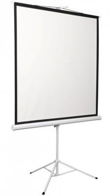 лучшая цена Экран 180x240см Digis Kontur-D DSKD-4304 4:3 напольный рулонный
