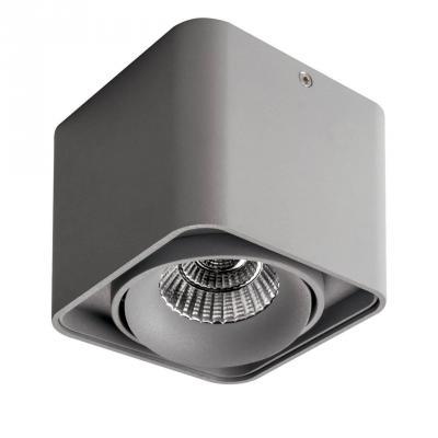 Купить Потолочный светодиодный светильник Lightstar Monocco 052119R