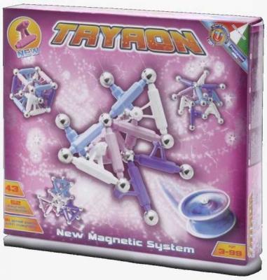 Купить Магнитный конструктор Plastwood Троян 43 элемента, Магнитные конструкторы для детей