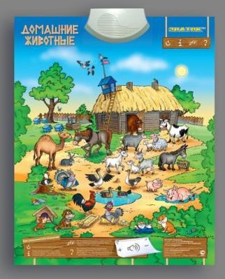 Купить Обучающий плакат Знаток Животные 70084/PL-10-ZH, Обучающие плакаты для детей
