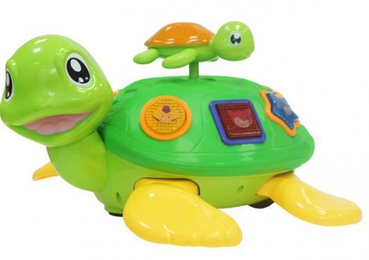Купить Интерактивная игрушка MY ANGEL Черепаха с малышом от 1 года, разноцветный, 30 см, металл, пластик, унисекс, Интерактивные игрушки
