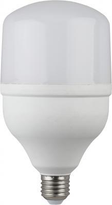 Лампа светодиодная ЭРА LED smd POWER 20W-6500-E27 (40/800) nvc nvc освещение светодиодная лампа high power lamp highlight энергосбережение теплый белый 4000k bulb 20w