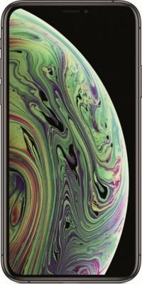 Смартфон Apple iPhone XS 512 Гб серый (MT9L2RU/A) смартфон apple iphone x 256 гб серый mqaf2ru a