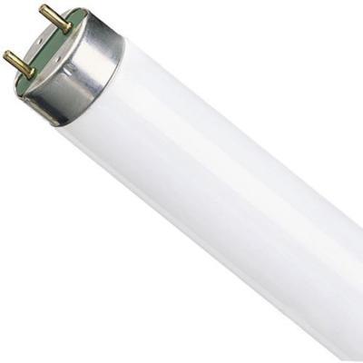 Лампа люминесцентная Osram Basic G13 18W/640 лампа люминесцентная ft8 15вт 54 g13 6500к