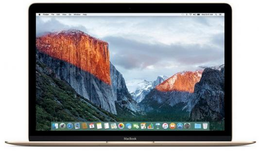 Ноутбук Apple MacBook (MRQN2RU/A) цена