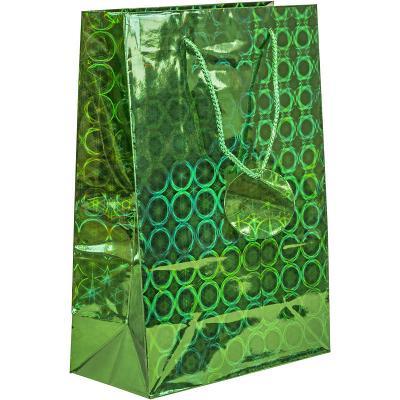Пакет подарочный Winter Wings Пакет подарочный голография 21*30*10 см пакет подарочный winter wings голография 12х36х10 см