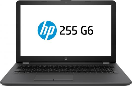 Ноутбук HP 255 G6 (3VJ25EA) ноутбук hp 255 g6 1xn66ea