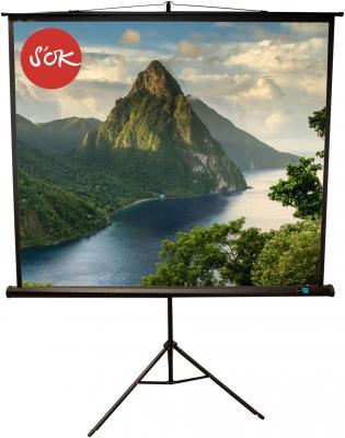 Экран переносной на штативе Sakura'OK SCPST-150x150BLCK 150 x 150 см экран sakura
