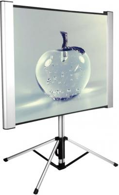 Экран Cactus 102x180см TriAlExpert CS-PSTALE-180X102 16:9 напольный рулонный