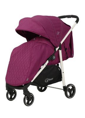 Прогулочная коляска Rant Alfa (alu purple) прогулочная коляска rant alfa alu black