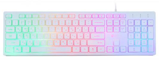 Клавиатура проводная Oklick 550ML USB белый цена и фото