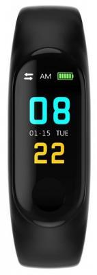 Смарт-браслет Smarterra FitMaster Color TFT черный/черный (SMFT-C01B)