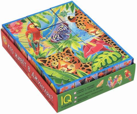 Купить Кубики АЙРИС-ПРЕСС 27056 Умные кубики в поддончике. 12 штук. Кто живёт в джунглях?, Кубики и стенки