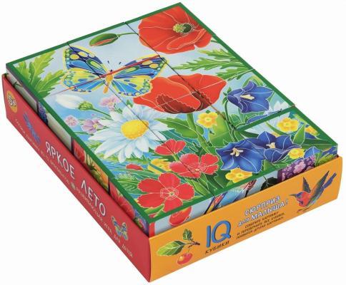 Купить Кубики АЙРИС-ПРЕСС 27060 Умные кубики в поддончике. 12 штук. Яркое лето, Кубики и стенки