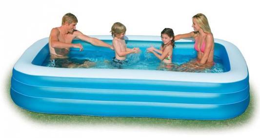 Надувной бассейн Intex Фэмили с58484 бассейн надувной intex easy 28144 56930