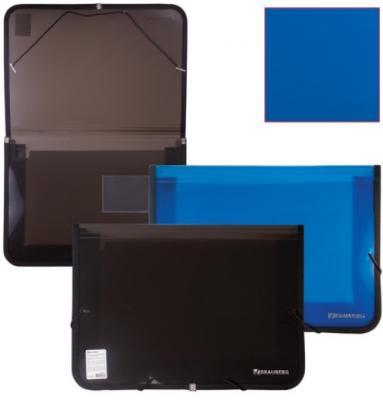 Папка на резинках BRAUBERG, широкая, А4, 330х240 мм, ассорти, Россия, 226016 brauberg папка на резинках business цвет синий 224144