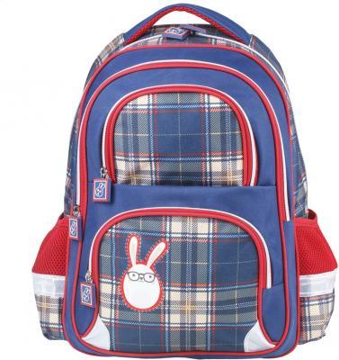 7202080c7e6c Рюкзак BRAUBERG, с EVA спинкой, для учениц начальной школы,