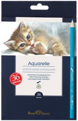 Карандаши цветные акварельные BRUNO VISCONTI Aquarelle, 36 цветов, европодвес, 30-0049 карандаши цветные акварельные bic aquacouleur 12 цветов заточенные европодвес 8575613