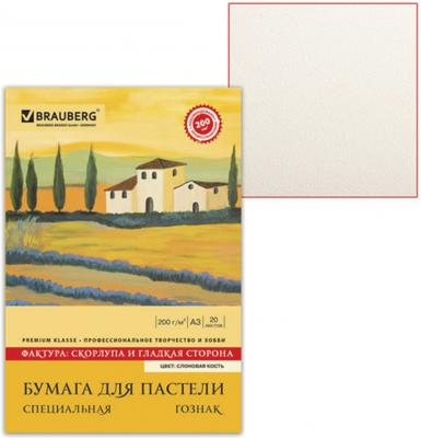 Фото - Папка для пастели BRAUBERG 126304 A3 20 листов папка для пастели brauberg скорлупа 126304 2 42 х 29 7 см a3 200 г м² 20 л 2шт